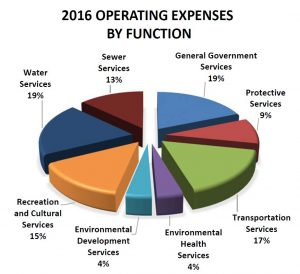 Expenses By Function